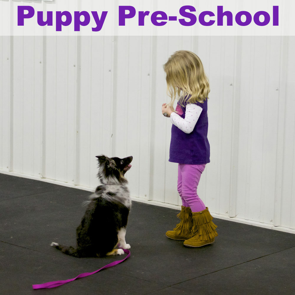 puppypreschool