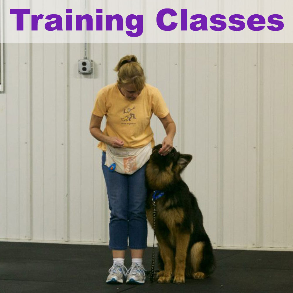 training-classes